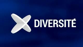 Diversité du 18.06.2013