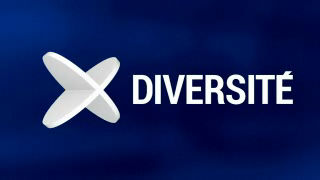 Diversité du 11.11.2013