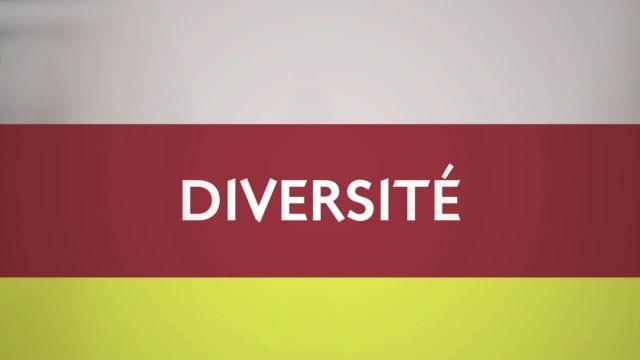 Diversité du 28.04.17